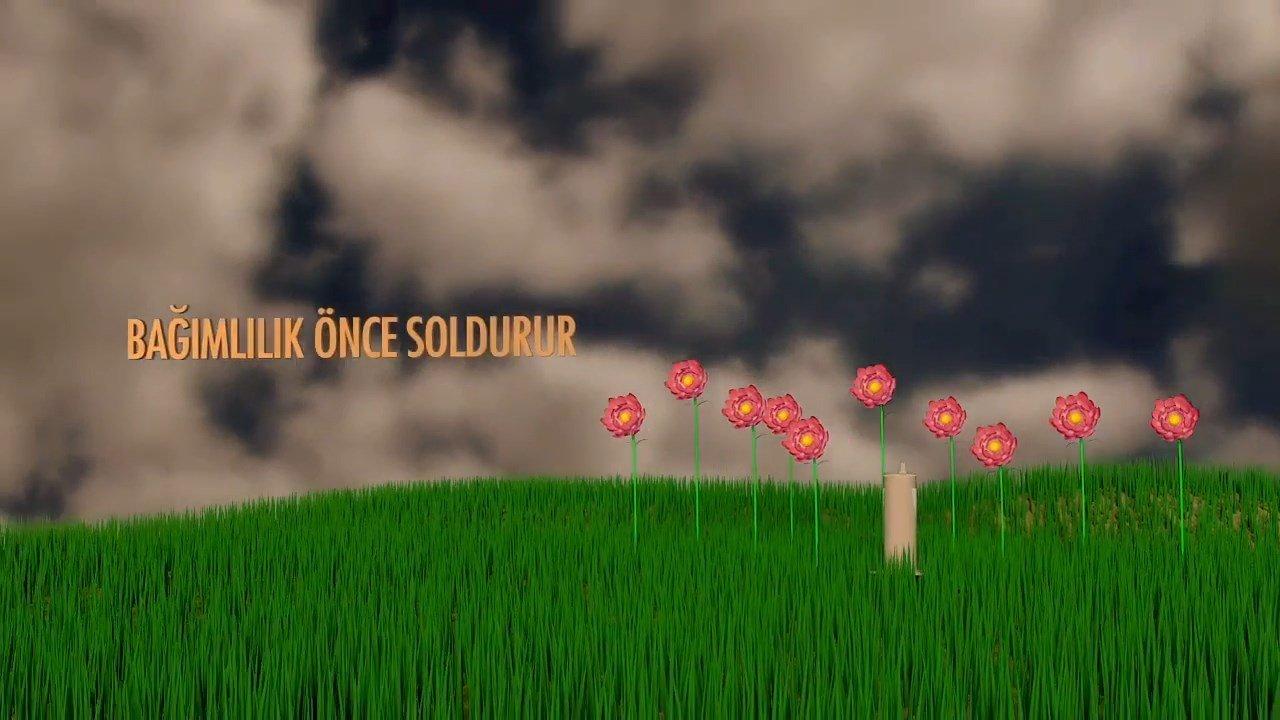 bağımlılık önce soldurur 1280x720 - Bağımlılık Öldürür 3D Animasyon Filmi