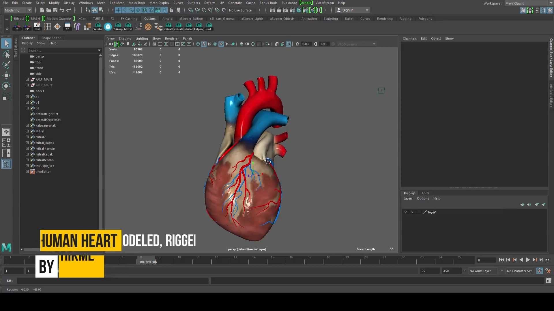 kalb4 1920x1080 - İnsan kalbi medikal animasyon projesi
